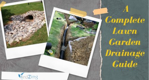 A Complete Lawn Garden Drainage Guide