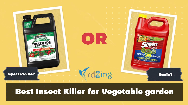 Best Insect Killer for Vegetable garden